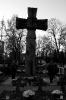 Dzień Zaduszny Lublin 2009 - Autor zdjęć: Joanna Ziomek