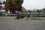 Niepołomice 2009 - Autor zdjęć: Grzegorz Jastrząb
