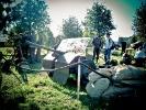 Pożegnanie Lata - Autor zdjęć: Anna Kołodziejczyk
