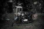 Pożegnanie Lata - Autor zdjęć: Daria Habryło