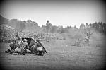 74 rocznica bitew pod Tomaszowem Lubelskim